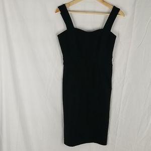 Club Monaco Wool Jumprr Dress